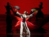 italie_Verone_opera_madame-butterfly_DR